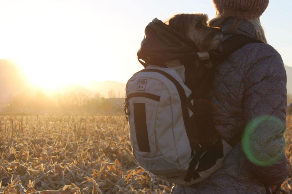 k9運動背袋airplus使用者照片分享01