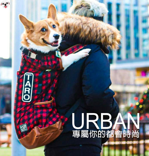 urban系列-urban2