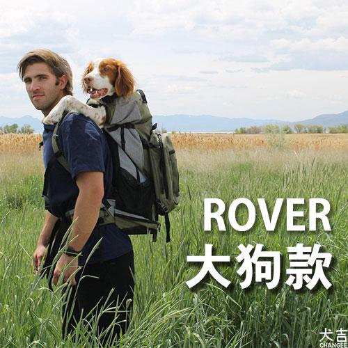 ROVER大狗款封面照片